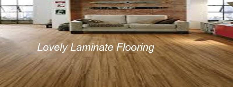 lovely laminate flooring