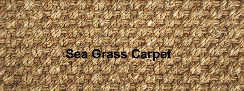 Sea Gr Carpet