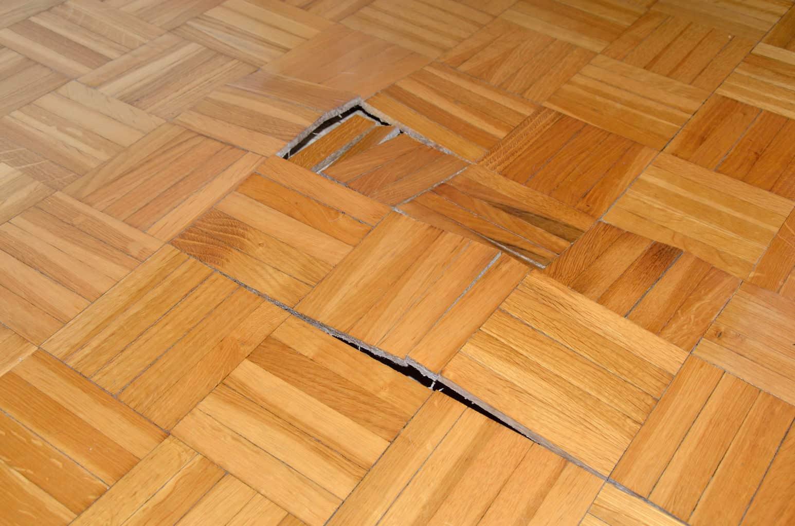 Restoring Hardwood Floors In One Day Theflooringlady