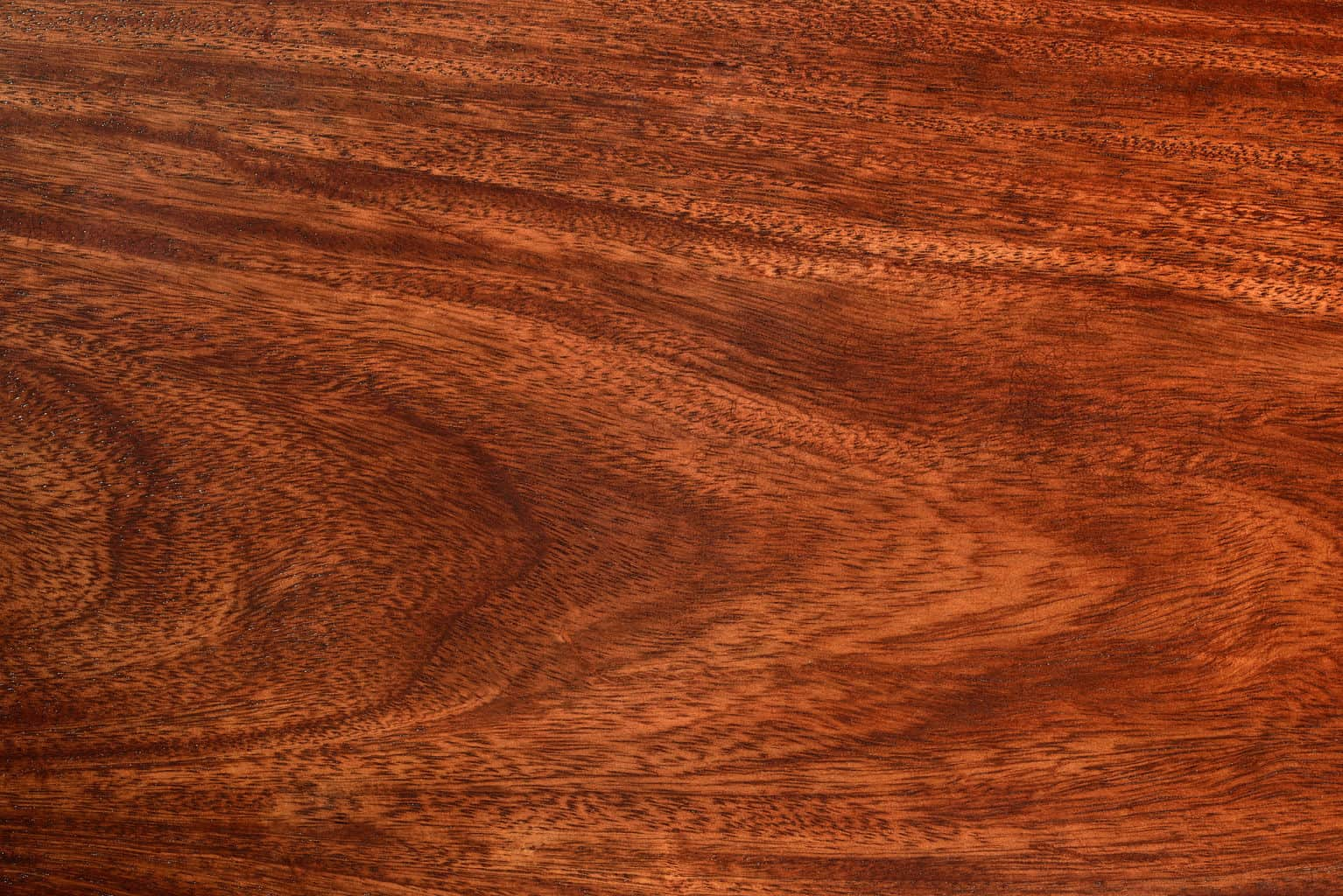 Replacing Floors Is Not So Why Deal With It Choosing Brazilian Walnut Means Floor That Will Last For Decades Literally