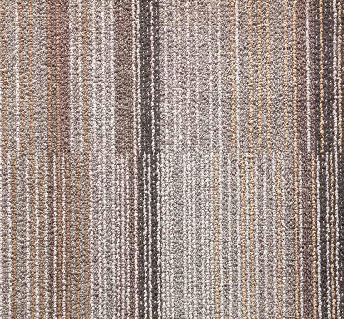 Olefin Carpet The Flooring Lady
