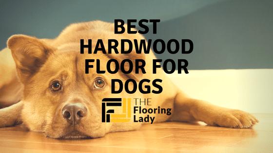 Best Hardwood Floors For Dogs