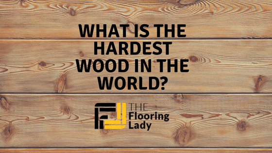 what is the hardest wood in the world_